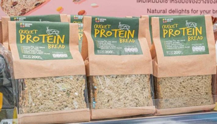 NSL ลุยตลาดอาหารผสมโปรตีนจิ้งหรีด